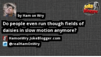 Memes, Run, and Slow Motion: ke  by Ham on Wry  Do people even run though fields of  daisies in slow motion anymore?  HamonWry JokeBlogger.com  @realHamOnWry https://t.co/TI1YsKU1NO by @realHamOnWry https://t.co/6ysNVRnESZ