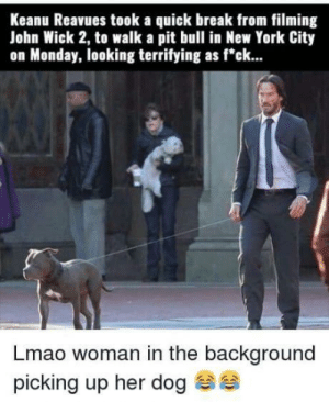 "Dank, John Wick, and Lmao: Keanu Reavues took a quick break from filming  John Wick 2, to walk a pit bull in New York City  on Monday, looking terrifying as f""ck...  Lmao woman in the background  picking up her dog Keanu strikes again! by NUTmeSHELL MORE MEMES"