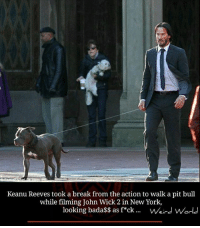 keanu reeve: Keanu Reeves took a break from the action to walk a pit bull  while filming John Wick 2 in New York,  looking bada$$ as f ck Weird World