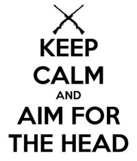Lord Of Gamers: KEEP  CALM  AND  AIM FOR  THE HEAD Lord Of Gamers