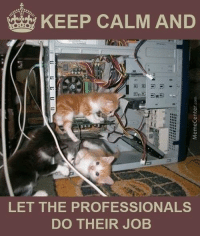Cutest tech support ever!: KEEP CALM AND  LET THE PROFESSIONALS  DO THEIR JOB  woyauaDawaW  li; in  舌 Cutest tech support ever!