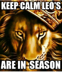 KEEP CALM LEO'S  ARE IN SEASON Our time