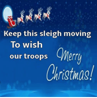 Memes, Appreciate, and 🤖: Keep this sleigh moving  To wish  our troops  CWerr  Christmas! Thank every service man or woman you meet along the way and not just at Christmas.  Their jobs aren't certain hours, they are on call 24/7 365!  Let's all show them that we appreciate their service and sacrifice.
