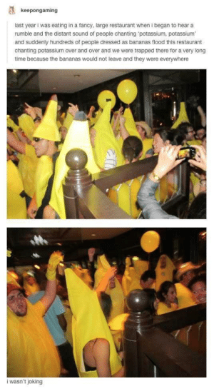 Potassium! Potassium! by kickro FOLLOW 4 MORE MEMES.: keepongaming  last year i was eating in a fancy, large restaurant when I began to hear a  rumble and the distant sound of people chanting 'potassium, potassium  and suddenly hundreds of people dressed as bananas flood this restaurant  chanting potassium over and over and we were trapped there for a very long  time because the bananas would not leave and they were everywhere  i wasn't joking Potassium! Potassium! by kickro FOLLOW 4 MORE MEMES.