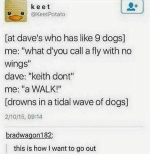 """This is the key to dying happy: keet  @KeetPotato  [at dave's who has like 9 dogs]  me: """"what d'you call a fly with no  wings""""  dave: """"keith dont""""  me: """"a WALK!""""  [drowns in a tidal wave of dogs]  2/10/15, 09:14  bradwagon182:  this is how I want to go out This is the key to dying happy"""