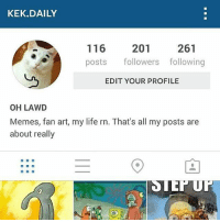 throwback: KEK DAILY  116  201  261  posts  followers following  EDIT YOUR PROFILE  OH LAWD  Memes, fan art, my life rn. That's all my posts are  about really throwback