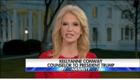 Memes, 🤖, and Ann: KELLY ANNE CONWAY  COUNSELOR TO PRESIDENT TRUMP  HANNITY