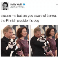 Memes, Twitter, and Zoom: Kelly Weill  @KELLY WEILL  excuse me but are you aware of Lennu,  the Finnish president's dog Hi, I'd like to meet Lennu. Do yourself a favor and zoom in and tag a derp. Via @_theblessedone Twitter @kellyweill