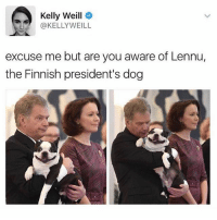 Memes, Presidents, and 🤖: Kelly Weill  @KELLYWEILL  excuse me but are you aware of Lennu,  the Finnish president's dog 🤣😍