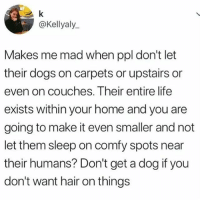 Agree or disagree?: @Kellyaly  Makes me mad when ppl don't let  their dogs on carpets or upstairs or  even on couches. Their entire life  exists within your home and you are  going to make it even smaller and not  let them sleep on comfy spots near  their humans? Don't get a dog if you  don't want hair on things Agree or disagree?