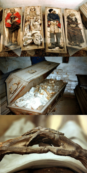 "Alive, Bodies , and Children: kellythejellyfish: sixpenceee:  More than 1000 mummies are currently stored in German churches - and many of these bodies are surrounded by their very own mysteries. According to one legend, Caroline Louise von Schönberg  had to be tied to her coffin because was still alive during her own burial and began knocking onto the lid. In order to avoid further ""disturbances"", Caroline's children, who had already divided up the inheritance, tied her up and had her buried alive. (Source), @sixpenceee  That's terrifying"