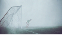 Being Alone, The Game, and Tumblr: kelptalks: thebeesareoutthere:  historycultureeducation: Goalkeeper Sam Bartram, alone on the pitch, not realizing that the game had been abandoned 15 minutes earlier due to heavy fog - 25 dec 1937 my last brain cell