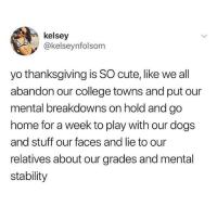College, Cute, and Dogs: kelsey  @kelseynfolsom  yo thanksgiving is SO cute, like we all  abandon our college towns and put our  mental breakdowns on hold and go  home for a week to play with our dogs  and stuff our faces and lie to our  relatives about our grades and mental  stability tag ur bffs