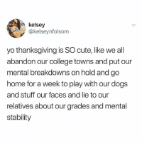 College, Cute, and Dogs: kelsey  @kelseynfolsom  yo thanksgiving is SO cute, like we all  abandon our college towns and put our  mental breakdowns on hold and go  home for a week to play with our dogs  and stuff our faces and lie to our  relatives about our grades and mental  stability