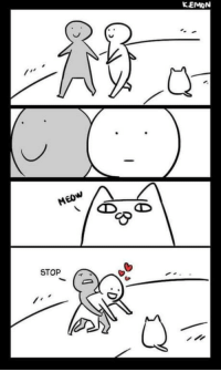 Girlfriend, Meow, and In a Nutshell: KEMON  MEOW  STOP My girlfriend in a nutshell.