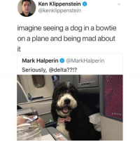 Fuck You, Funny, and Ken: Ken Klippenstein  @kenklippenstein  imagine seeing a dog in a bowtie  on a plane and being mad about  Mark Halperin@MarkHalperin  Seriously, @delta??!? Fuck you Mark.