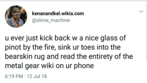 Dank, Fire, and Memes: kenanandkel.wikia.com  @slime_machine  u ever just kick back w a nice glass of  pinot by the fire, sink ur toes into the  bearskin rug and read the entirety of the  metal gear wiki on ur phone  6:19 PM 12 Jul 18 Meirl by ConfuzzledC MORE MEMES