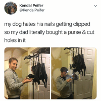 not having it 😂: Kendal Peifer  @KendalPeifer  my dog hates his nails getting clipped  so my dad literally bought a purse & cut  holes in it not having it 😂