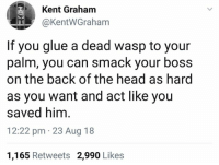 Head, Humans of Tumblr, and Back: Kent Graham  @KentWGraham  If you glue a dead wasp to your  palm, you can smack your boss  on the back of the head as hard  as you want and act like you  saved him  12:22 pm 23 Aug 18  1,165 Retweets 2,990 Likes