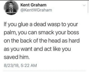 Funny, Head, and Back: Kent Graham  @KentWGraham  If you glue a dead wasp to your  palm, you can smack your boss  on the back of the head as hard  as you want and act like you  saved him.  8/23/18, 5:22 AM Need to try this one via /r/funny https://ift.tt/2rcdUDq
