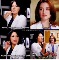 Memes, Sorry, and 🤖: KepnerIneed you to speak diferentty  m sorry  PRODUCE  JEFF RAFNER  It's  differently  Like with an accent? Who remembers this? 😂 #GreysAnatomy https://t.co/xupv953Etn