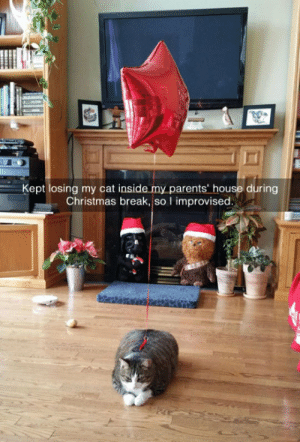 srsfunny:  I'm Never Losing My Cat Againhttp://srsfunny.tumblr.com/: Kept losing my cat inside my parents' house during  Christmas break, so I improvised. srsfunny:  I'm Never Losing My Cat Againhttp://srsfunny.tumblr.com/