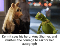 Star, Courage, and Bertstrips: Kermit sees his hero, Amy Shumer, and  musters the courage to ask for her  autograph