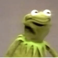 kermit the frog scrunched face - Google Search