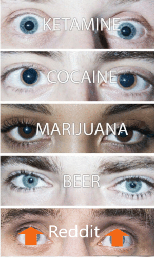 Beer, Reddit, and Cocaine: KETAMINE  COCAINE  MARIJUANA  BEER  Reddit I Just cant stop browsing man.