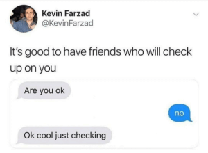 You Ok: Kevin Farzad  @KevinFarzad  It's good to have friends who will check  up on you  Are you ok  no  Ok cool just checking