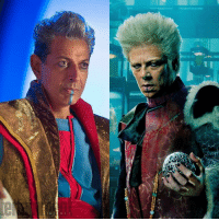 Kevin Feige confirms The Collector (Benicio Del Toro) and The Grandmaster  (Jeff Goldblum) are brothers in the MCU! http://bit.ly/2pFA0Mc  (Andrew Gifford): Kevin Feige confirms The Collector (Benicio Del Toro) and The Grandmaster  (Jeff Goldblum) are brothers in the MCU! http://bit.ly/2pFA0Mc  (Andrew Gifford)