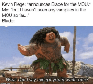 "A simple explanation as to why we haven't see any vampires in the MCU yet: Kevin Fiege: *announces Blade for the MCU.  Me: ""but I haven't seen any vampires in the  MCU so far...""  Blade:  What can I say except you're-welcome?  imaflin com A simple explanation as to why we haven't see any vampires in the MCU yet"