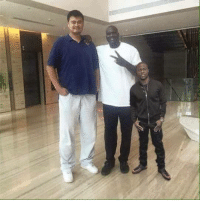 Kevin Hart is so tiny next to Shaq and Lao Ming: Kevin Hart is so tiny next to Shaq and Lao Ming
