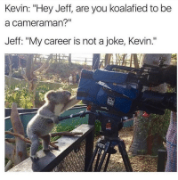 "Tumblr, Blog, and Http: Kevin: ""Hey Jeff, are you koalafied to be  a cameraman?""  Jeff: ""My career is not a joke, Kevin."" <p><a href=""http://memehumor.net/post/164556309776/this-is-serious"" class=""tumblr_blog"">memehumor</a>:</p>  <blockquote><p>This Is Serious</p></blockquote>"