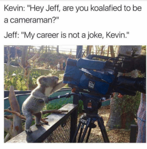 """Memes, My Career, and Via: Kevin: """"Hey Jeff, are you koalafied to be  a cameraman?""""  Jeff: """"My career is not a joke, Kevin."""" Are you koalafied? via /r/memes https://ift.tt/2OFRw2h"""