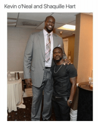 WTF IS THIS!?!?!?: Kevin O'Neal and Shaquille Hart WTF IS THIS!?!?!?