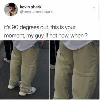 Memes, Shark, and Time: kevin shark  @boynamedshark  it's 90 degrees out. this is your  moment, my guy. if not now, when? Hey since u always see @kalesalad in ur explore feed it's time u finally follow