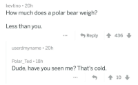 how much does a polar bear weigh: kevtino 20h  How much does a polar bear weigh  Less than you  Reply 436  userdmyname 20h  Polar_Ted 18h  Dude, have you seen me? That's cold.  10