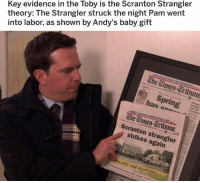 Memes, Wow, and Spring: Key evidence in the Toby is the Scranton Strangler  theory: The Strangler struck the night Pam went  into labor, as shown by Andy's baby gift  The Times-Oribune  , spring  has e.  The Uimes Oribune  Scranton strangler  strikes again  EEDA oh wow