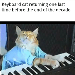 He lives on only in our memories: Keyboard cat returning one last  time before the end of the decade He lives on only in our memories