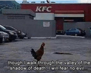 Kfc, Chicken, and Death: KFC  though l walk through the valley of the  shadow of death, I will fear no evil For you are with me... 🐔😂 • • • • • #chicken #christianmemes #memesforchristians #memes4christ #kfc #godsgotme https://t.co/21CPheAoGv https://t.co/OPTJFftbPi