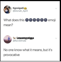 Emoji, Memes, and Mean: Kgosigadi  @Donah_April  What does this  mean?  emoji  Lmaomyynigga  @KevSithole  No one know what it means, but it's  provocative 😩