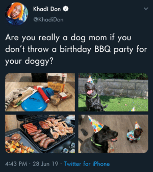This looks more fun than every BBQ Ive ever thrown.: Khadi Don  @KhadiDon  Are you really a dog  don't throw a birthday BBQ party for  your doggy?  mom it you  EY  OWER BITES  petco  4:43 PM 28 Jun 19 Twitter for iPhone This looks more fun than every BBQ Ive ever thrown.