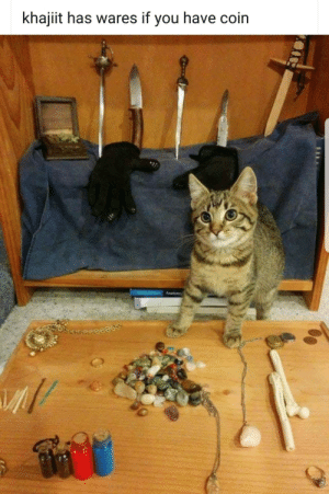 You,  Coin, and  Khajiit: khajiit has wares if you have coin
