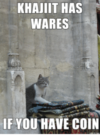 Lol, Memes, and Hilarious: KHAJIIT HAS  WARES  IF YOU HAVE COIN I find this hilarious lol