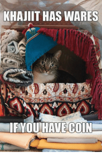 Khajiit Has Wares: KHAJIIT HAS WARES  IF YOU HAVE COIN