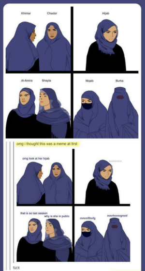 Meme, Omg, and Fuck: Khimar  Chador  Hijab  Al-Amira  Shayla  Niqab  Burka  omg i thought this was a meme at first  omg look at her hijab  that is so last seasorn  why is she in public  mmrfmrmrgmmf  fuck Its been a while since ive seen this in here