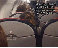 """Dank, Drugs, and Meme: Kick my seat again,  and l'll tell TSA  I smelled drugs in  our carry-on <p>I Dare You, I Double Dare You Mother Fucker via /r/dank_meme <a href=""""http://ift.tt/2HdCVoc"""">http://ift.tt/2HdCVoc</a></p>"""