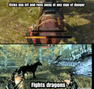 Horses, Games, and Horse: Kicks you off and runs away at any sign of danger  HORSE'S FEAR LEVEL  HORSE STAMINA  Fights dragons both are great games though