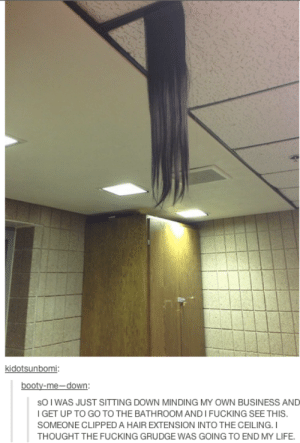 Booty, Fucking, and Life: kidotsunbomi:  booty-me-down:  sOI WAS JUST SITTING DOWN MINDING MY OWN BUSINESS AND  I GET UP TO GO TO THE BATHROOM AND I FUCKING SEE THIS  SOMEONE CLIPPED A HAIR EXTENSION INTO THE CEILING.I  THOUGHT THE FUCKING GRUDGE WAS GOING TO END MY LIFE. *grudge noises*